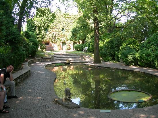 Ninfee nel laghetto foto di parco giardino sigurt for Immagini di laghetti artificiali