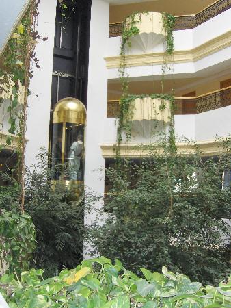 Majesty Golf Hotel: l'ascenceur