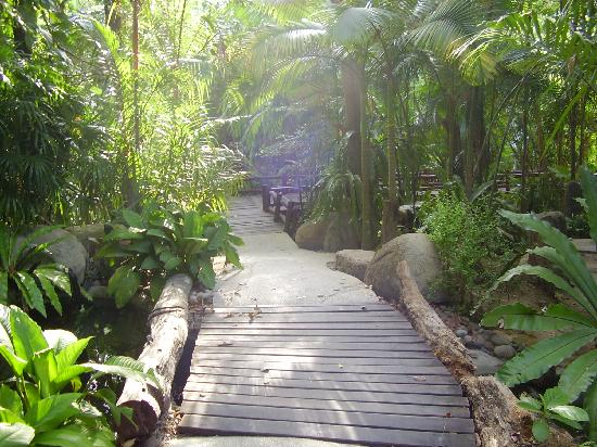 Somkiet Buri Resort: The walkway