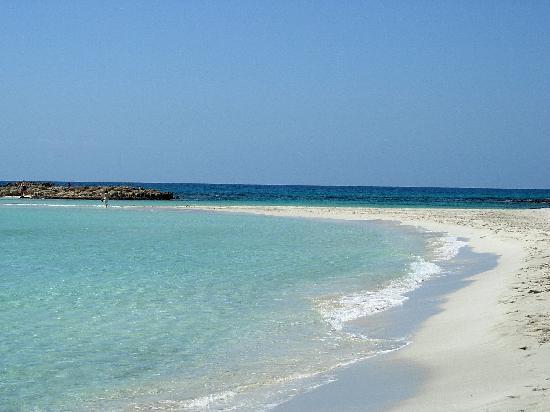 Nissi Beach Resort: la spiaggia