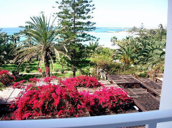 Nissi Beach Resort: dal balcone della camera