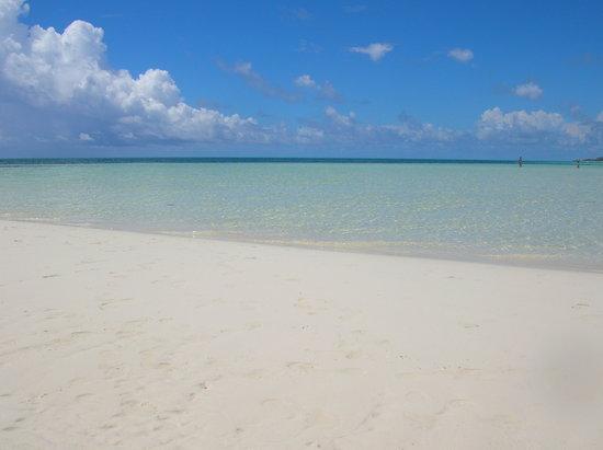 Isla Gran Bahama: That's paradise!!!!!!