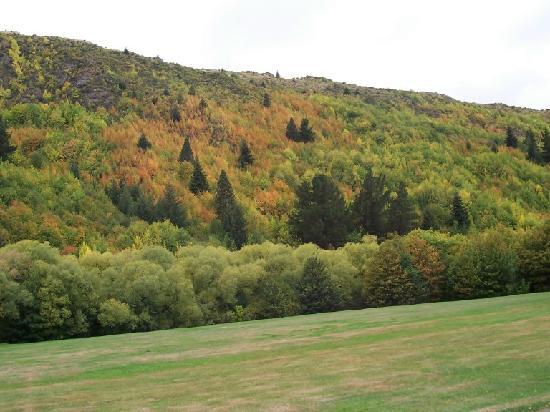 Arrowtown Homestay: Pre autumn colours, Arrowtown