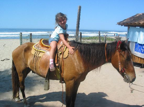 Mi Casa Su Casa: daughter riding horse on beach