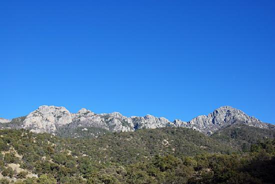 Santa Rita Lodge: Madera Canyon From Nature Trail Loop