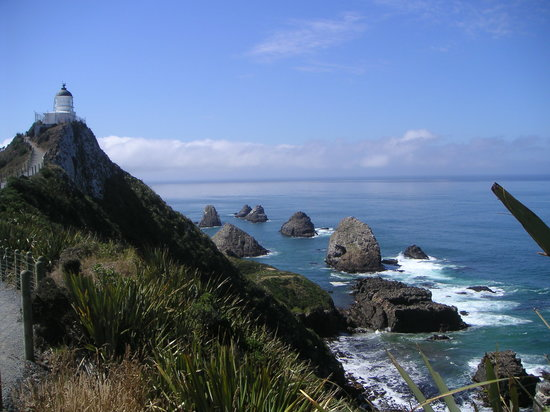 Southland Region, Nouvelle-Zélande : Nugget Point, looking South