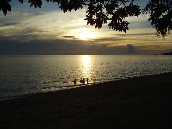 Malolo Island Resort: Last swim before nightfall