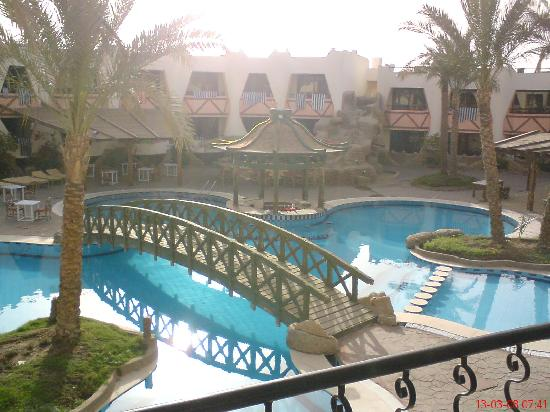 Dolphina Country Club: the view from my hotel room