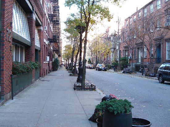 Greenwich Village Habitue: Apt street (on the left beside the tree in tub)