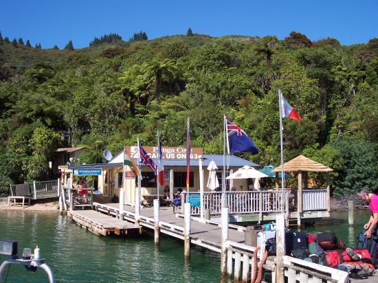 Punga Cove Resort: Cafe on the dock