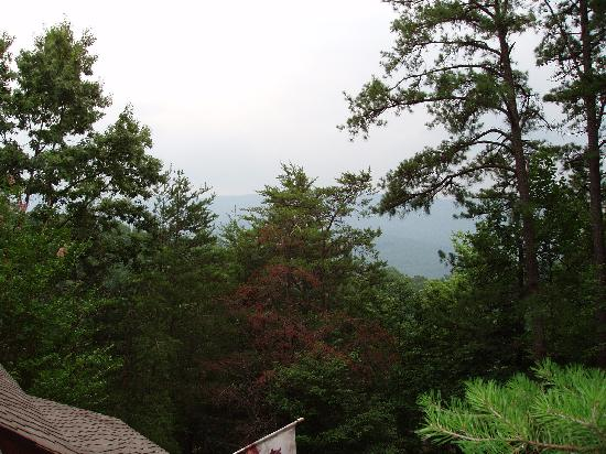 Uncle Bud's Log Cabins: the view from the upper deck