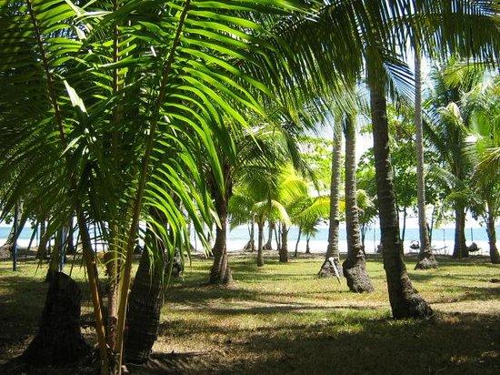 Bahia de los Delfines: Los Delfines beach
