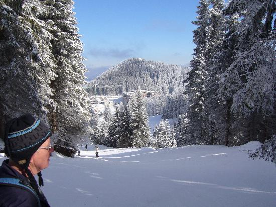 Smolyan, Bulgaria: Blue sky and skiing