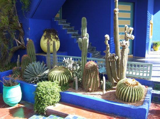 Marrakech, Marrocos: World famous Jardin Majorelle