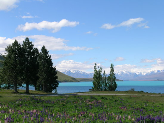 YHA Lake Tekapo: View from the back of the hostel