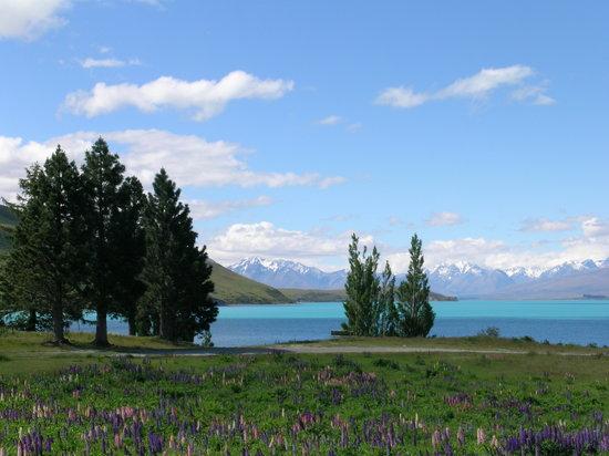 YHA Lake Tekapo : View from the back of the hostel