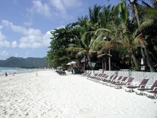 Le Paradis Boutique Resort & Spa: The beach