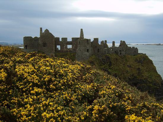 Antrim Coast Road: Dunluce Castle