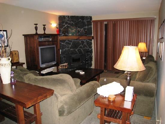 Summit Condominiums: Living Room View 1