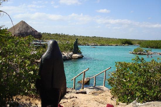 Organic Yoga Mexico: best snorkel laguna ever, ask Leon