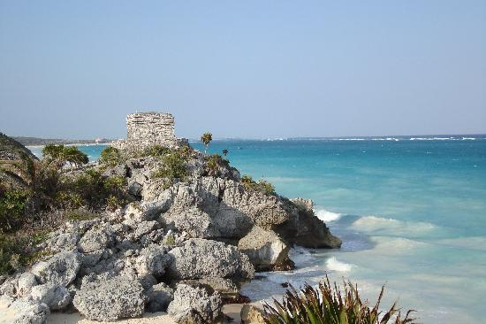 Organic Yoga Mexico: Tulum is 10 mins away!