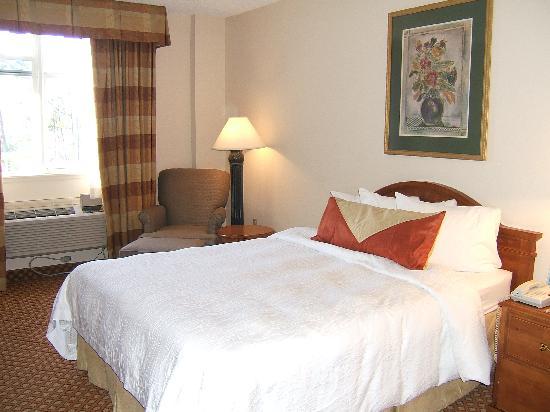 Hilton Garden Inn Jacksonville / Ponte Vedra: Our room