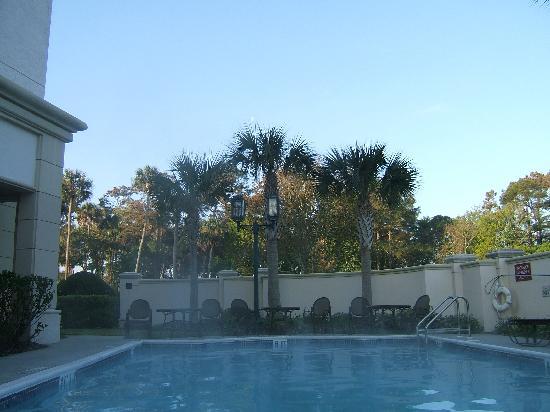 هيلتون جارن إن جاكسونفيل / بونت فيدرا: The pool