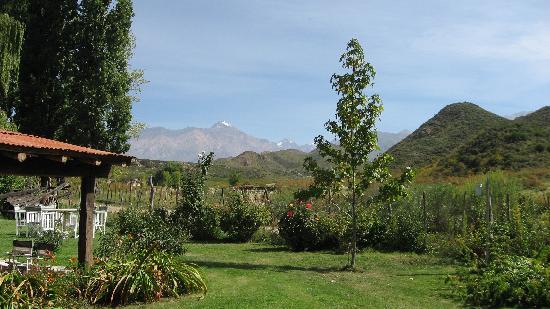 Tupungato, Argentina: El Puesto