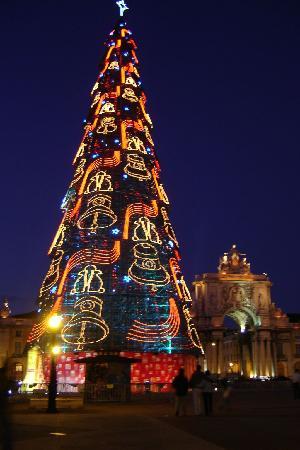 Rbol de navidad gigante picture of lisbon lisbon - Arbol tipico de navidad ...