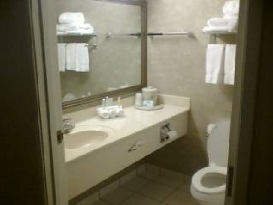 Holiday Inn Express Hotel & Suites Norfolk: Bathroom