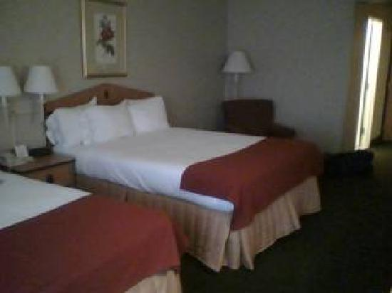 Holiday Inn Express Hotel & Suites Norfolk: Beds