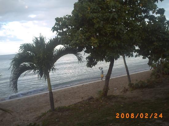 Casa Vista Del Mar Inn: Playa Beach 71