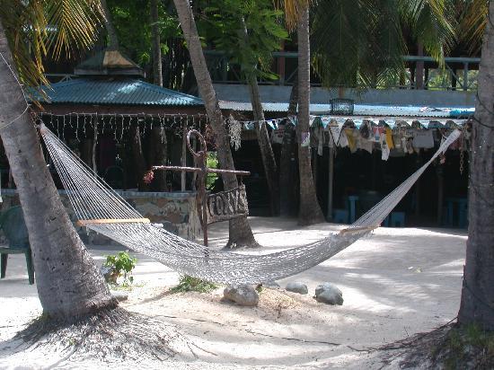 Foxy S Bar Yost Van Dyke Bvi Foto Di Isole Vergini