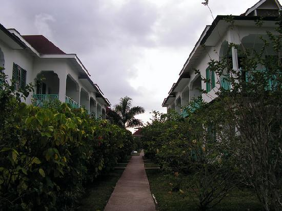 Coral Seas Garden: View of the rooms