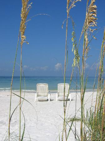 Cedars Tennis Resort: Am Strand von Longboat Key