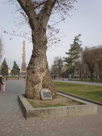 Volgograd Hotel: Monument