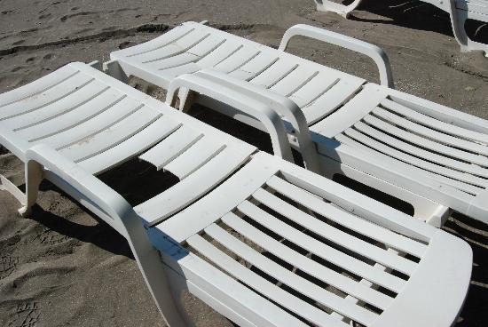 Tat de plusieurs chaises sur la plage picture of - Chaises de plage ...