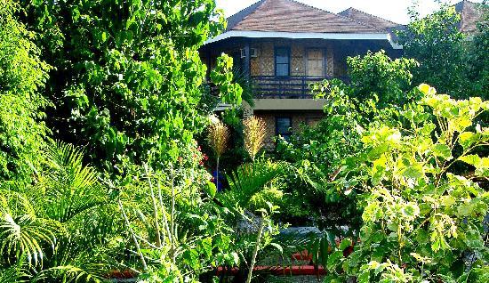 ALTA Cebu Resort : View of the Alta Center and Botanicals