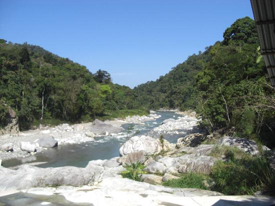 Jungle River Lodge: River view from lodge