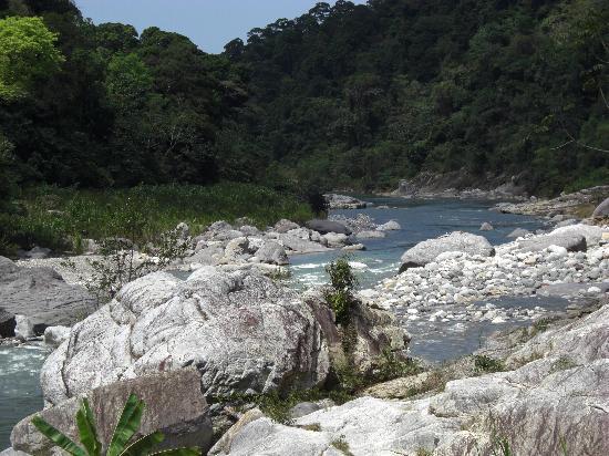 Jungle River Lodge: Antoher lodge view