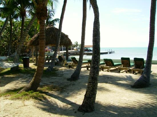 Popp's Motel : Another View of Hotel's Beach
