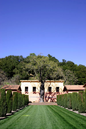 Clos Pegase Winery: Interior courtyard