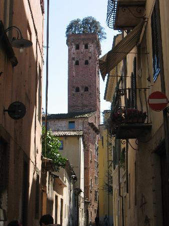Lucca, Italia: The Tower