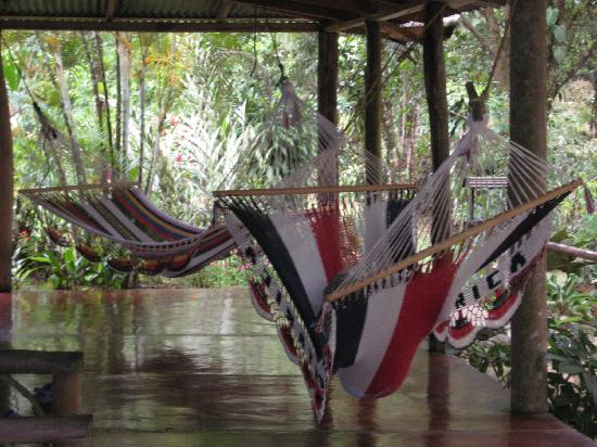 La Carolina Lodge : Pura Vida in hammocks