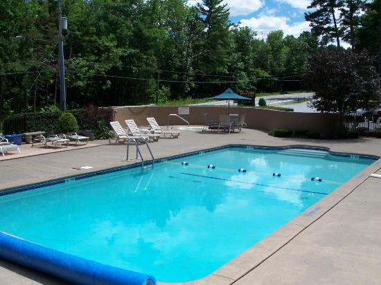 Tall Pines Motel: THE POOL