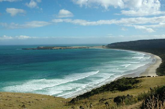 Waikava Harbour View: A beach in the Catlins