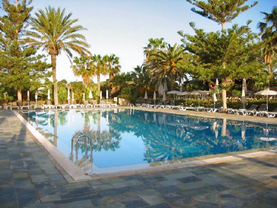 Nissi Beach Resort: The outdoor pool