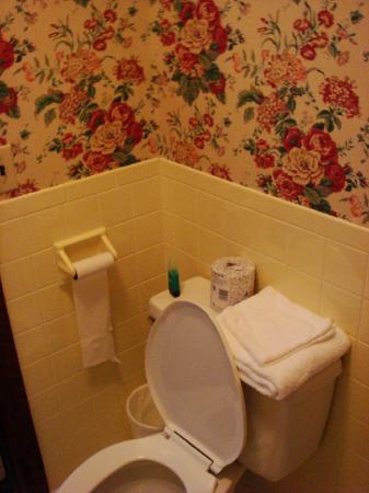 The Mountain Inn: toilet