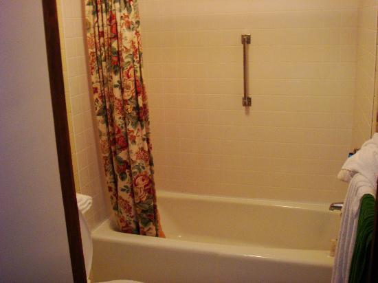 The Mountain Inn: bath