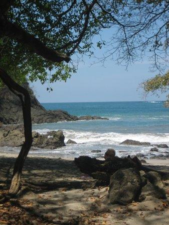 Эстерильос-Эсте, Коста-Рика: Manuel Antonio Park Beach